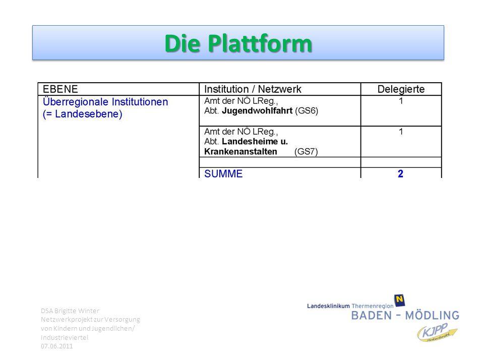 Die Plattform DSA Brigitte Winter Netzwerkprojekt zur Versorgung von Kindern und Jugendlichen/ Industrieviertel 07.06.2011.