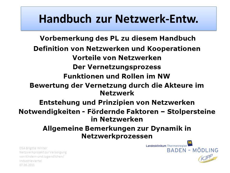 Handbuch zur Netzwerk-Entw.