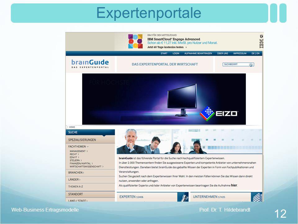 Expertenportale Web-Business Ertragsmodelle Prof. Dr. T. Hildebrandt
