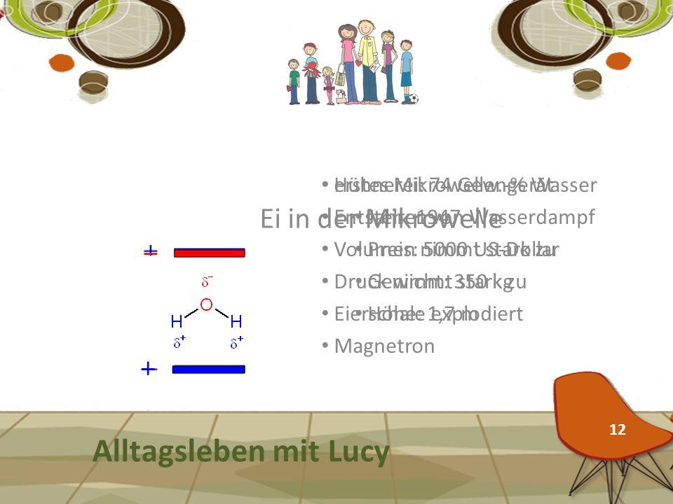 Alltagsleben mit Lucy Ei in der Mikrowelle erstes Mikrowellengerät
