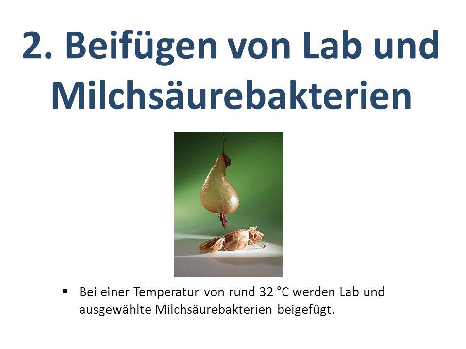 2. Beifügen von Lab und Milchsäurebakterien