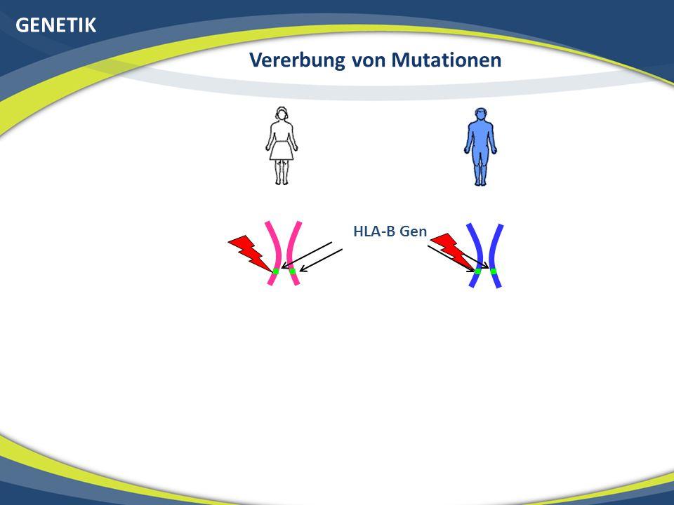 Vererbung von Mutationen