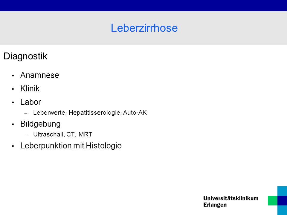 Leberzirrhose Diagnostik Anamnese Klinik Labor Bildgebung