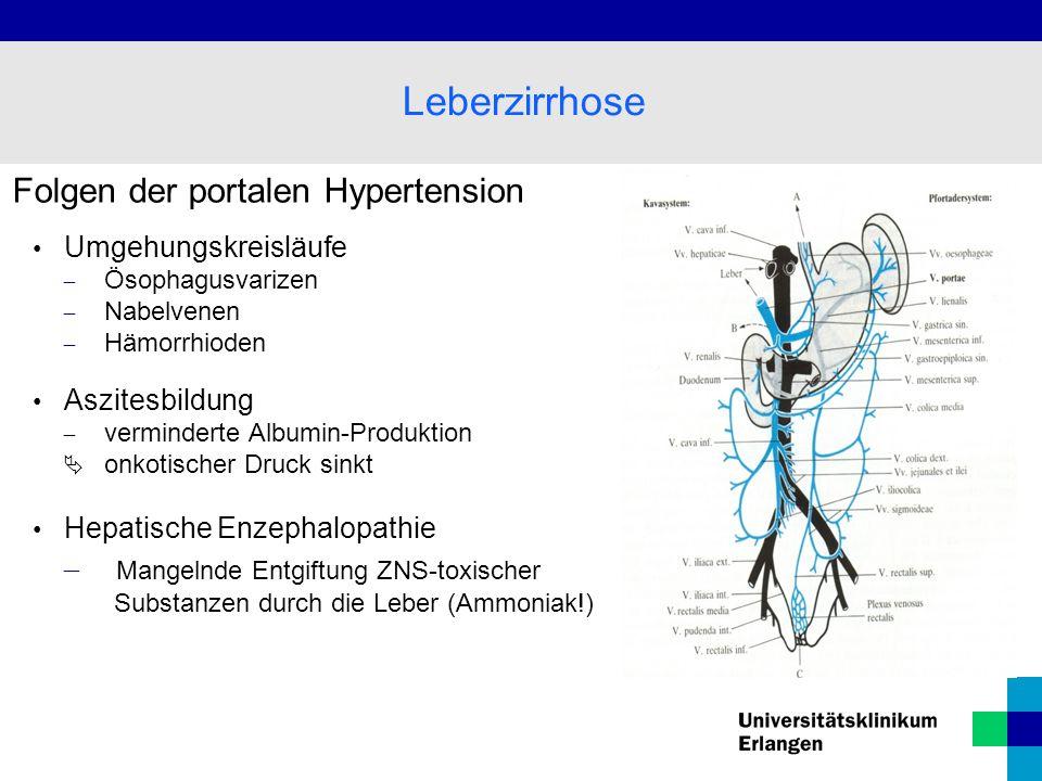 Leberzirrhose Folgen der portalen Hypertension