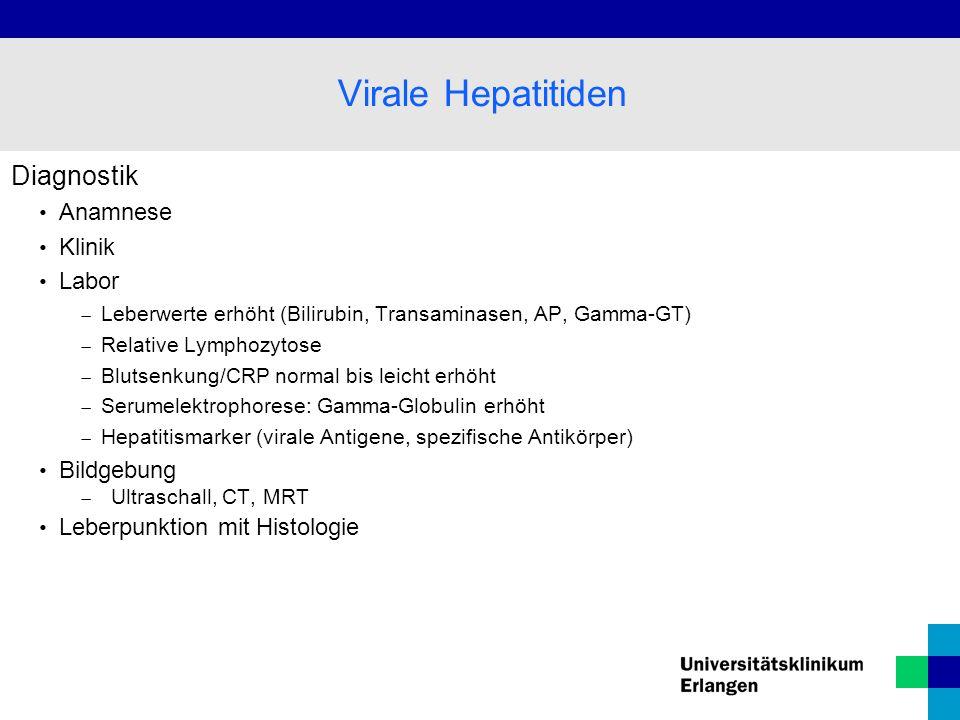 Virale Hepatitiden Diagnostik Anamnese Klinik Labor Bildgebung
