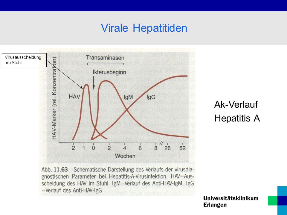 Virale Hepatitiden Virusausscheidung im Stuhl Ak-Verlauf Hepatitis A