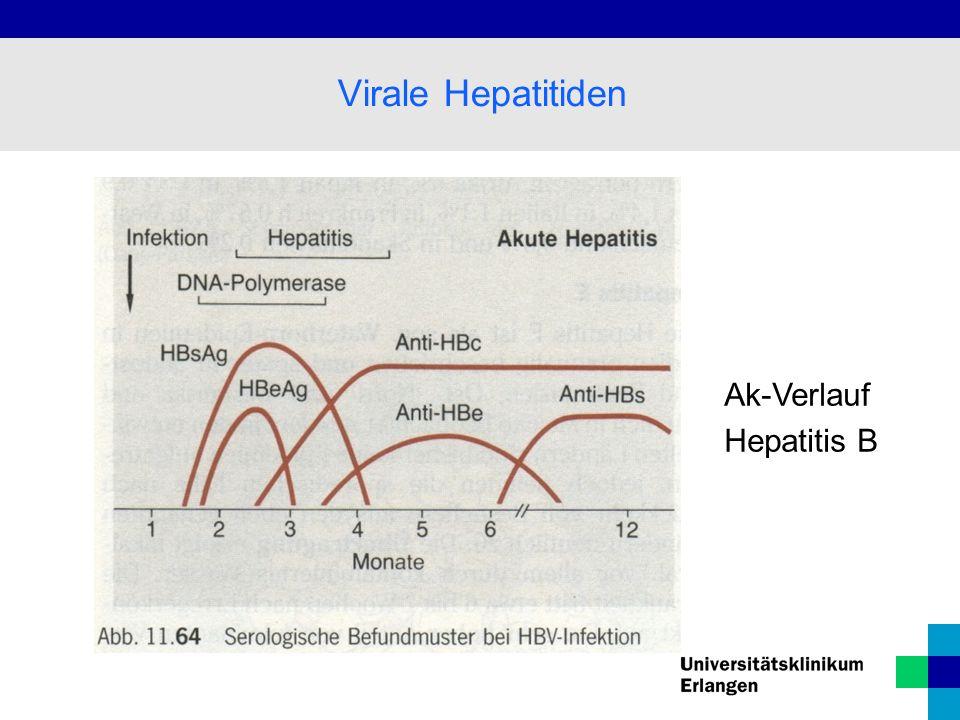 Virale Hepatitiden Ak-Verlauf Hepatitis B