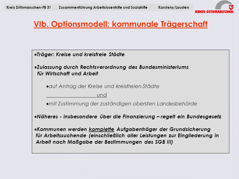 VIb. Optionsmodell: kommunale Trägerschaft