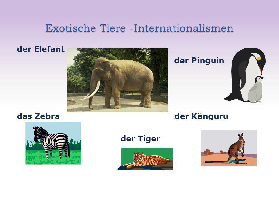 Exotische Tiere -Internationalismen