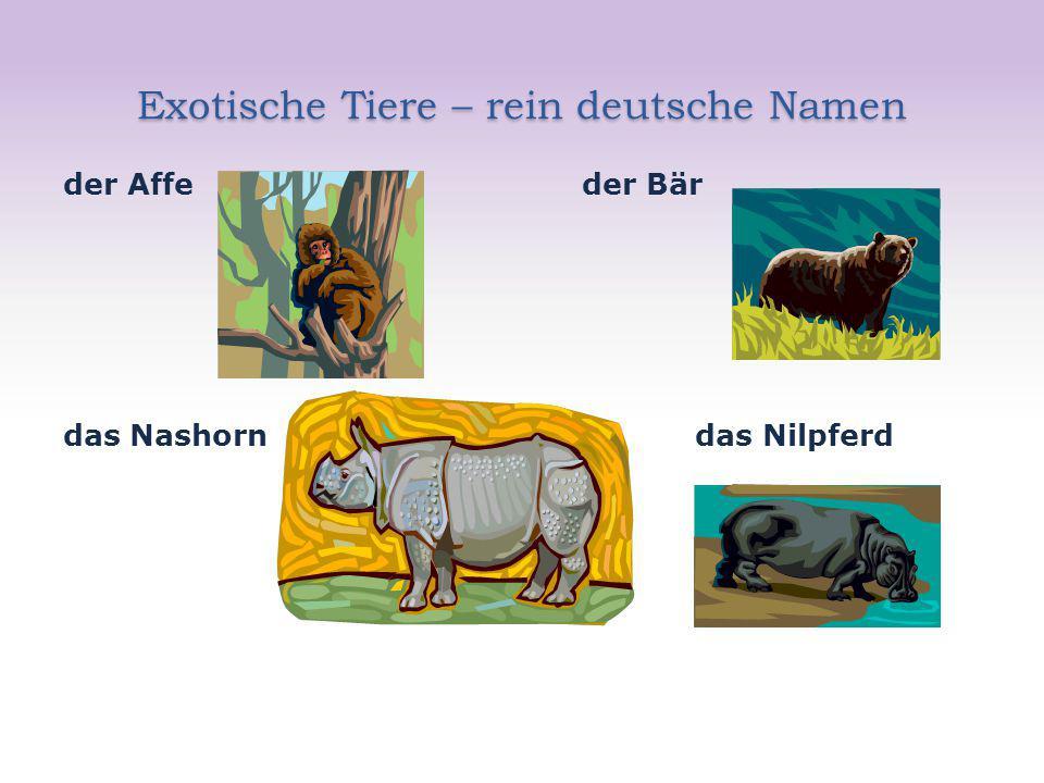 Exotische Tiere – rein deutsche Namen
