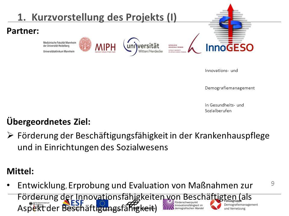 1. Kurzvorstellung des Projekts (I)