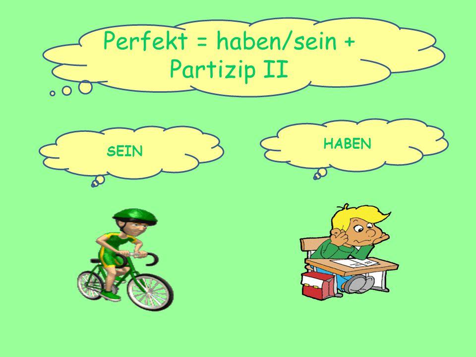 Perfekt = haben/sein + Partizip II