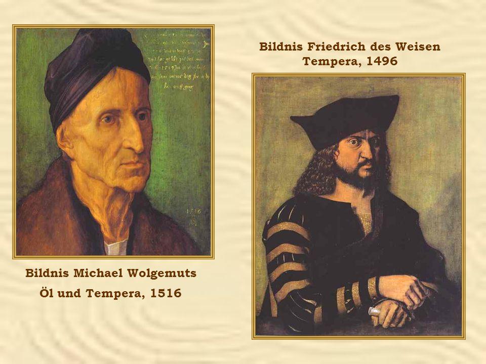 Bildnis Friedrich des Weisen Bildnis Michael Wolgemuts