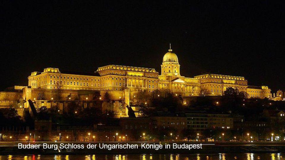 Budaer Burg Schloss der Ungarischen Könige in Budapest