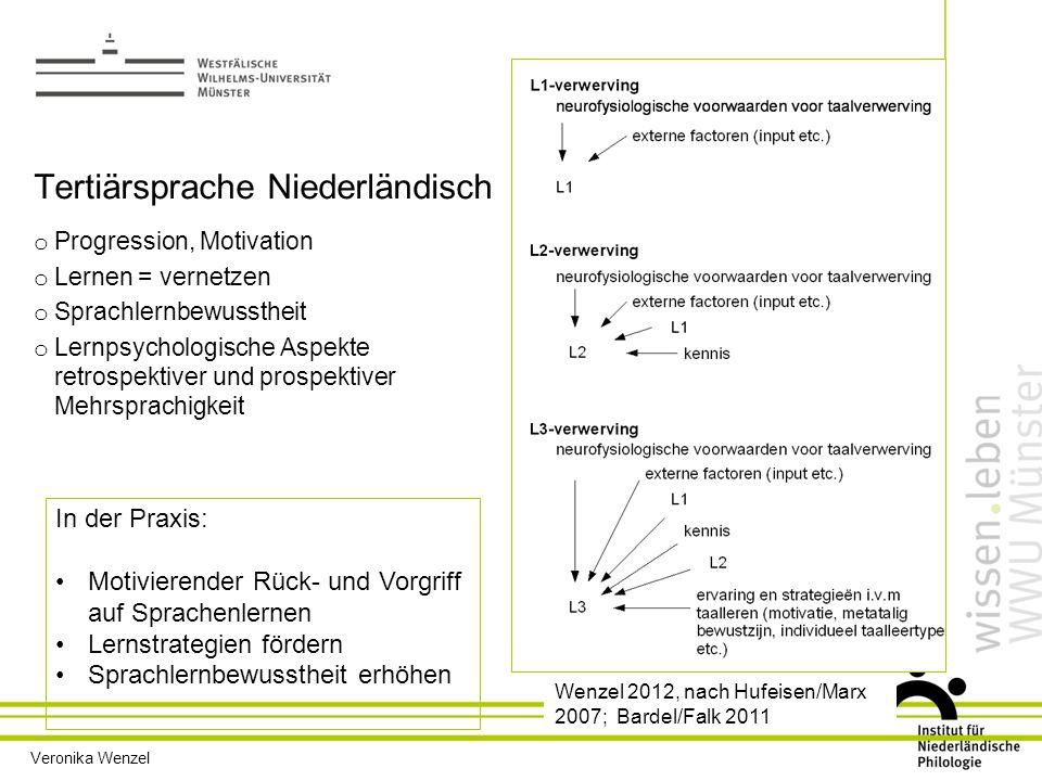 Tertiärsprache Niederländisch