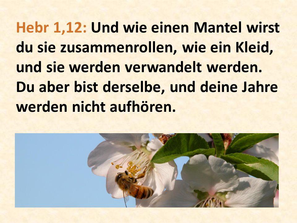 Hebr 1,12: Und wie einen Mantel wirst du sie zusammenrollen, wie ein Kleid, und sie werden verwandelt werden.