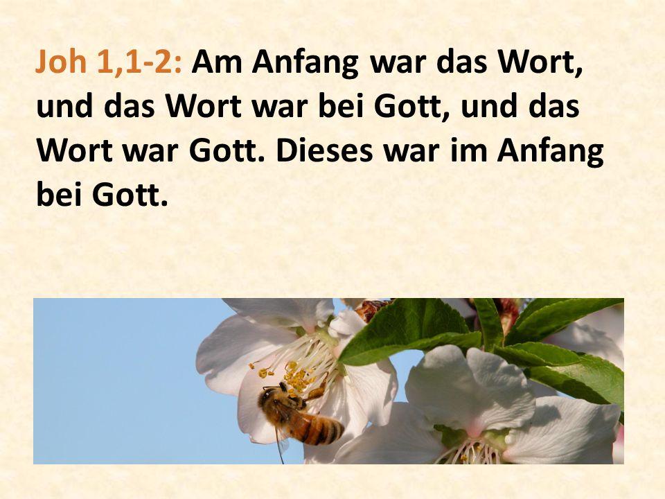 Joh 1,1-2: Am Anfang war das Wort, und das Wort war bei Gott, und das Wort war Gott.
