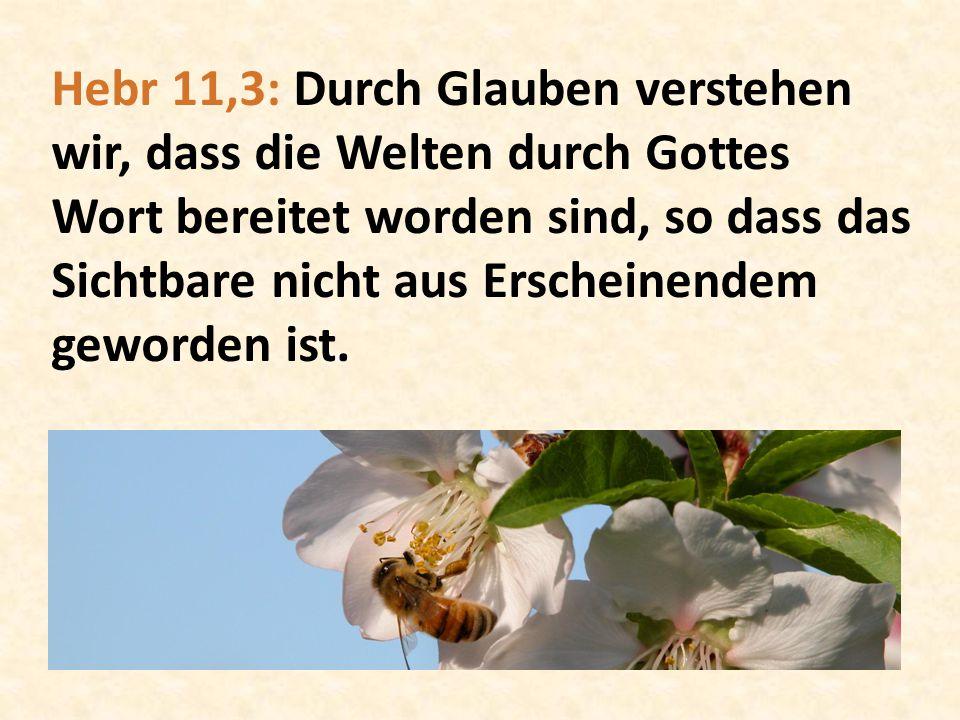 Hebr 11,3: Durch Glauben verstehen wir, dass die Welten durch Gottes Wort bereitet worden sind, so dass das Sichtbare nicht aus Erscheinendem geworden ist.