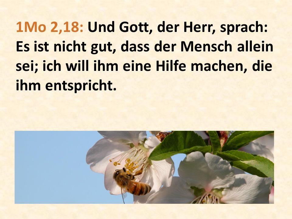 1Mo 2,18: Und Gott, der Herr, sprach: Es ist nicht gut, dass der Mensch allein sei; ich will ihm eine Hilfe machen, die ihm entspricht.