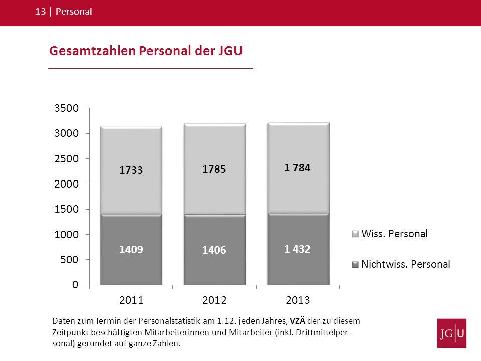 Gesamtzahlen Personal der JGU