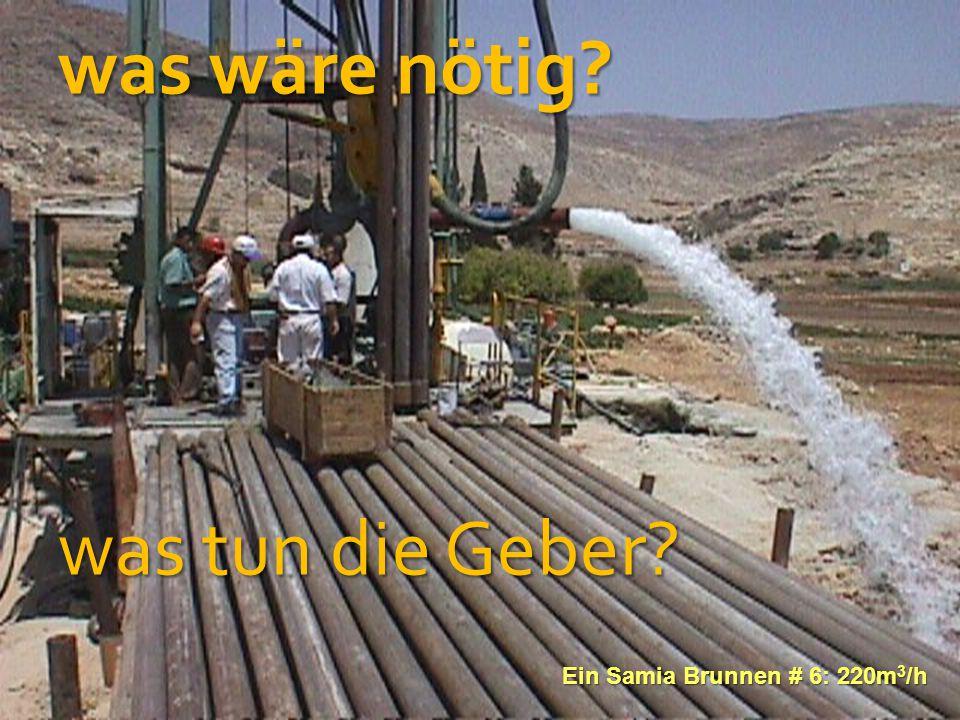 was wäre nötig was tun die Geber  Ein Samia Brunnen # 6: 220m3/h