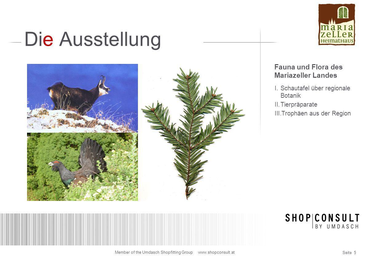 Die Ausstellung Fauna und Flora des Mariazeller Landes