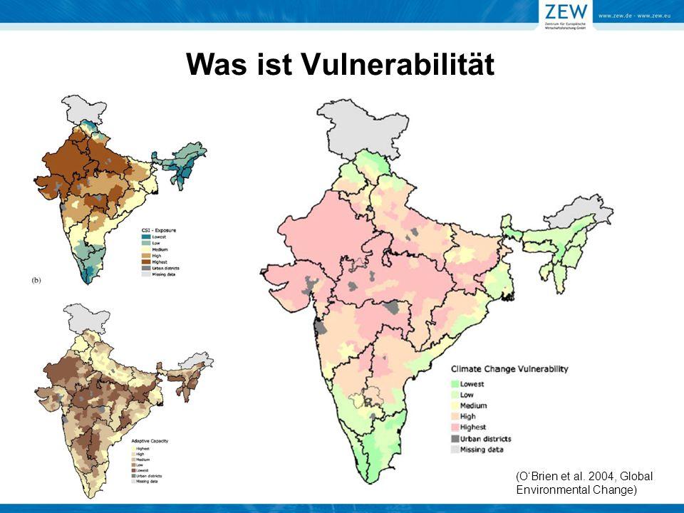 Was ist Vulnerabilität