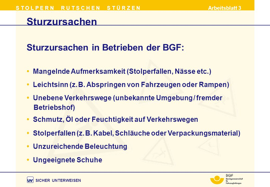 Sturzursachen Sturzursachen in Betrieben der BGF: