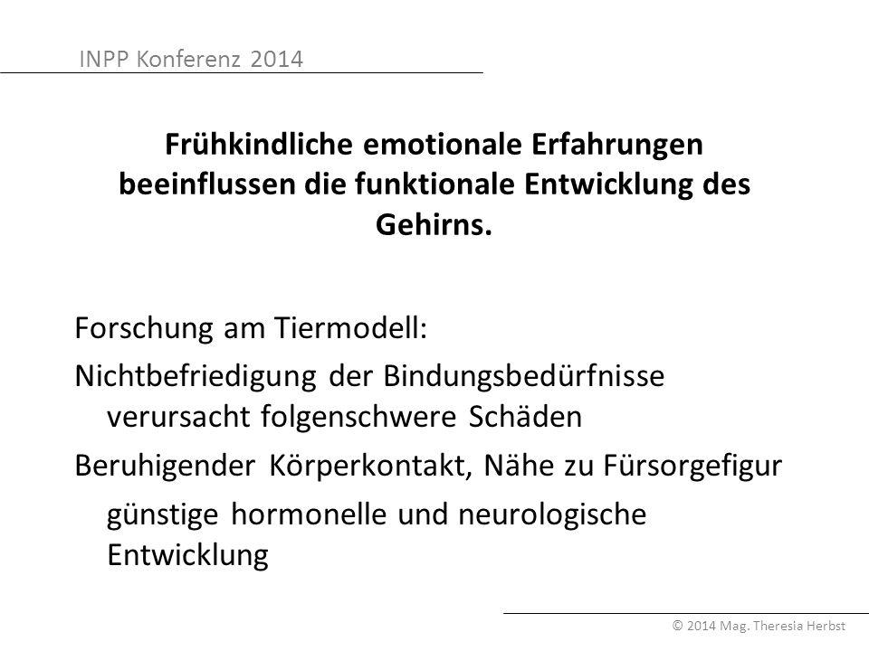 Frühkindliche emotionale Erfahrungen beeinflussen die funktionale Entwicklung des Gehirns.