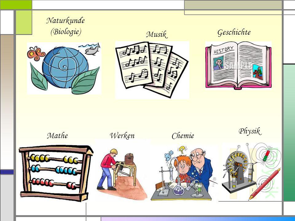 Naturkunde (Biologie) Geschichte Musik Physik Mathe Werken Chemie