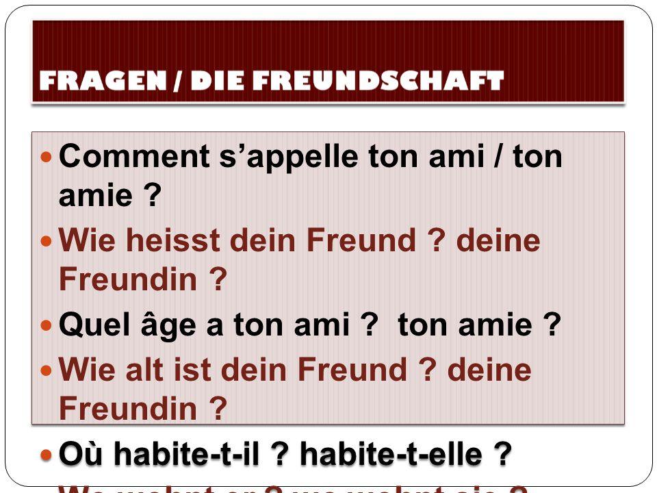 FRAGEN / DIE FREUNDSCHAFT