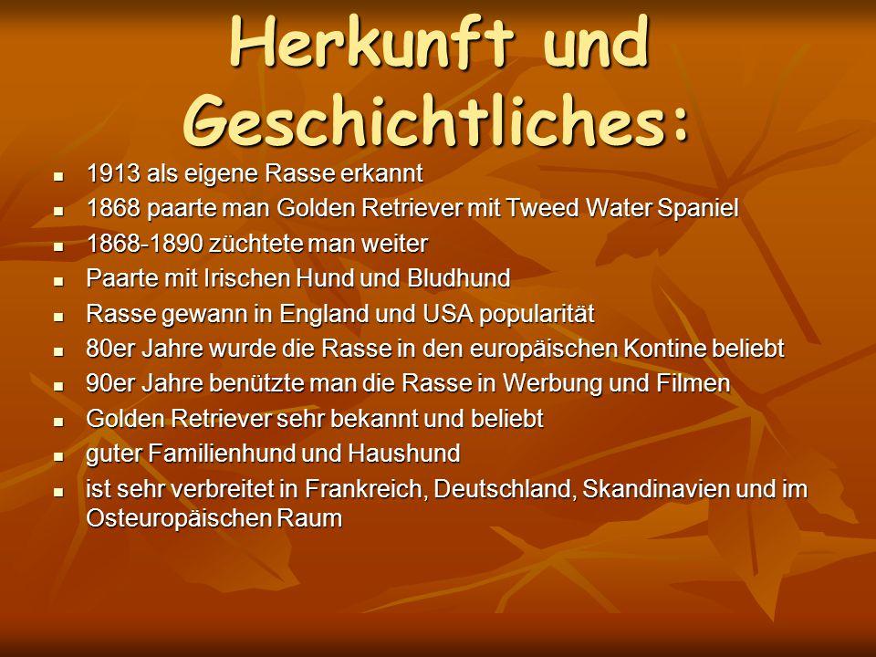Herkunft und Geschichtliches: