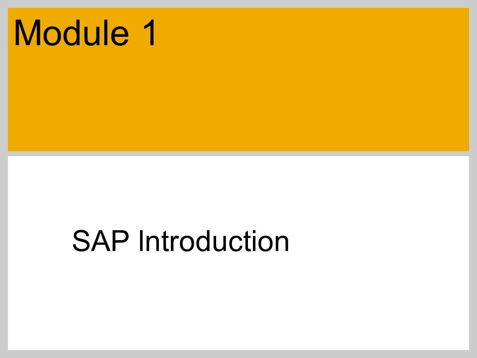 Module 1 SAP lntroduction
