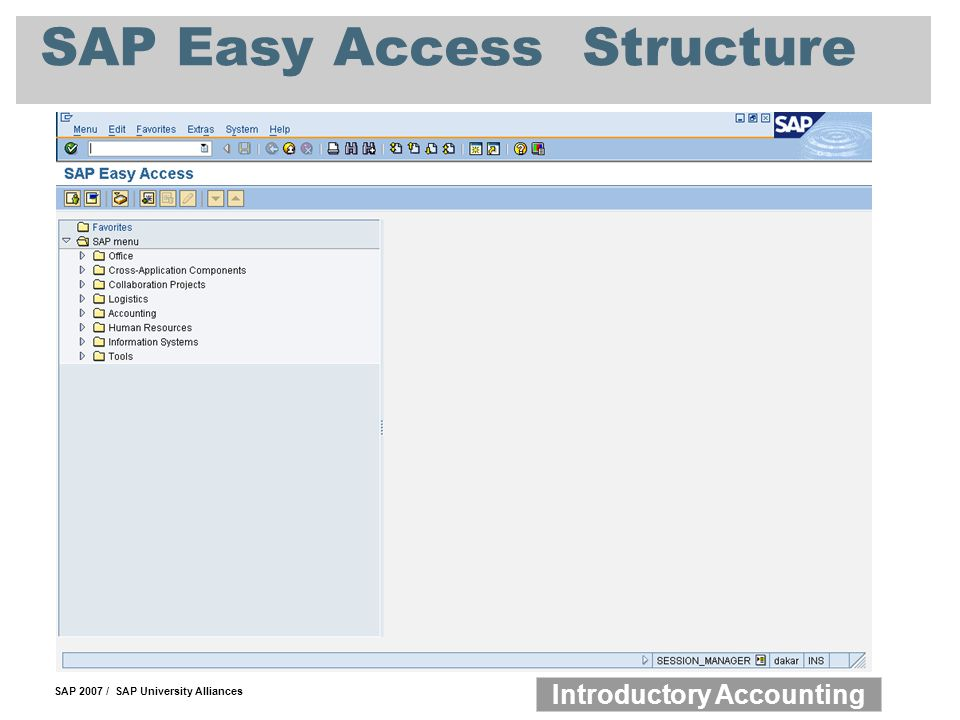 SAP Easy Access Structure