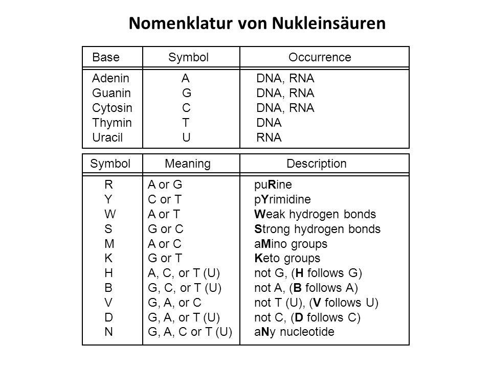 Nomenklatur von Nukleinsäuren