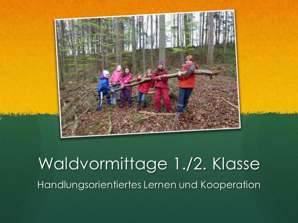 Waldvormittage 1./2. Klasse