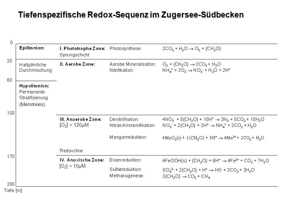 Tiefenspezifische Redox-Sequenz im Zugersee-Südbecken