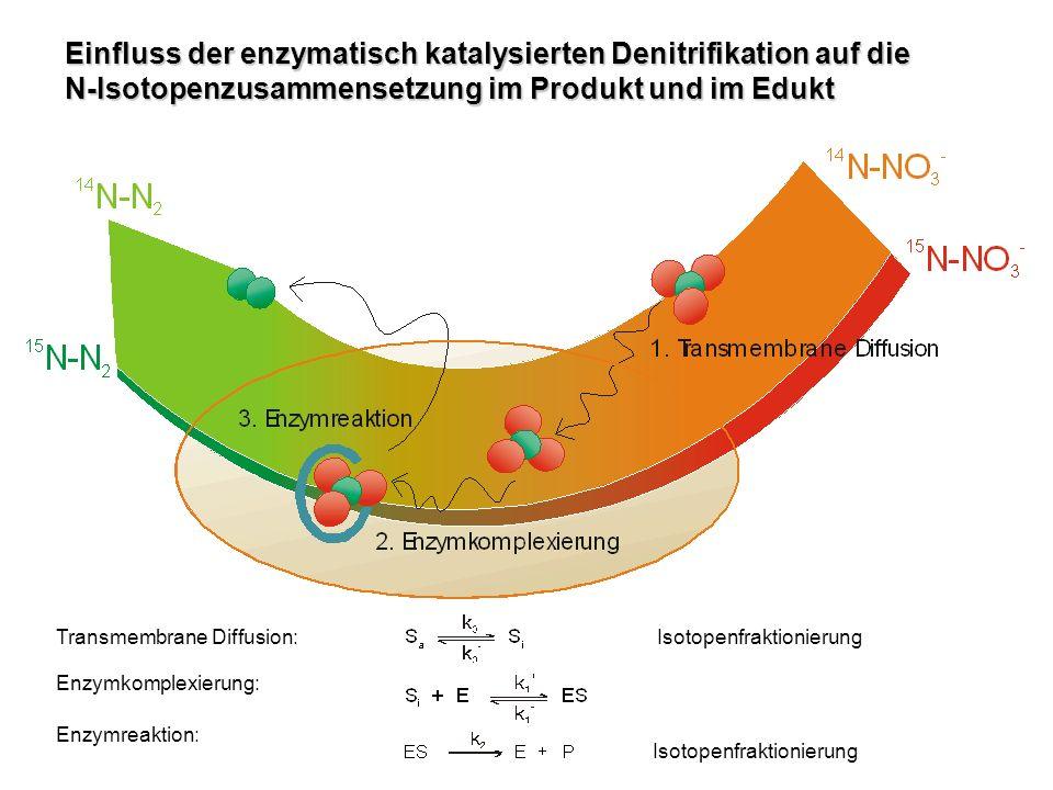 Einfluss der enzymatisch katalysierten Denitrifikation auf die