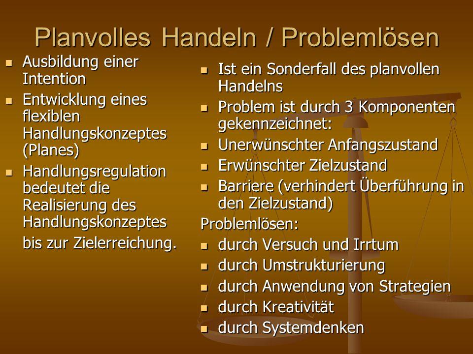 Planvolles Handeln / Problemlösen