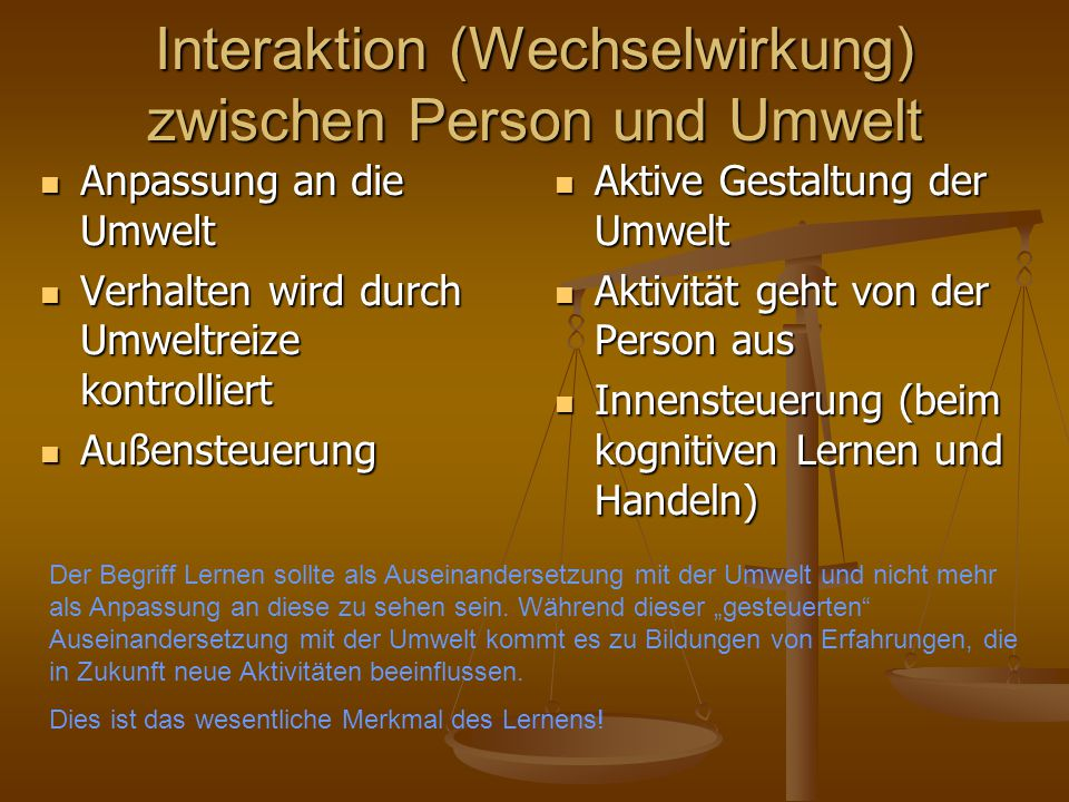 Interaktion (Wechselwirkung) zwischen Person und Umwelt