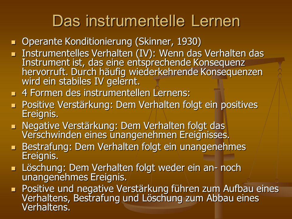 Das instrumentelle Lernen