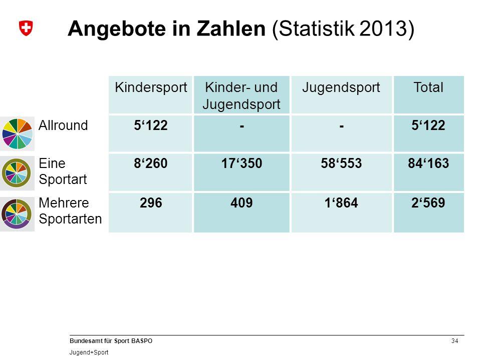 Angebote in Zahlen (Statistik 2013)