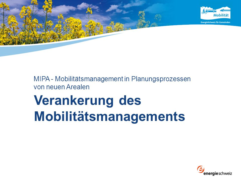 Verankerung des Mobilitätsmanagements