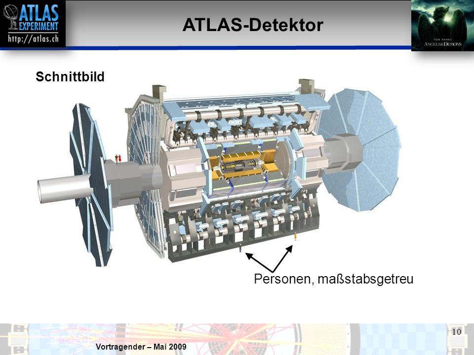 ATLAS-Detektor Schnittbild Personen, maßstabsgetreu