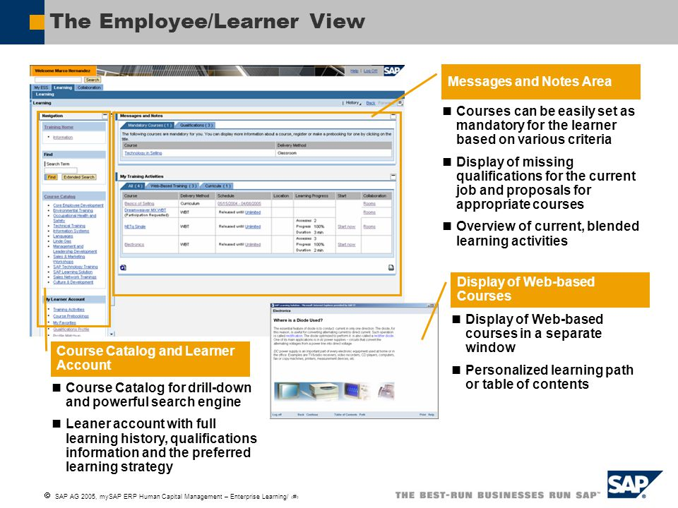 The Employee/Learner View