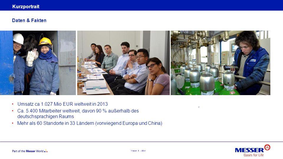 Umsatz ca 1.027 Mio EUR weltweit in 2013