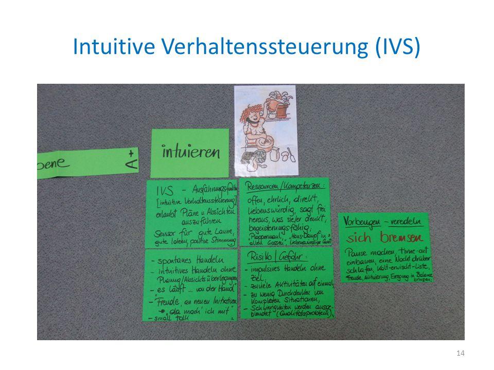 Intuitive Verhaltenssteuerung (IVS)