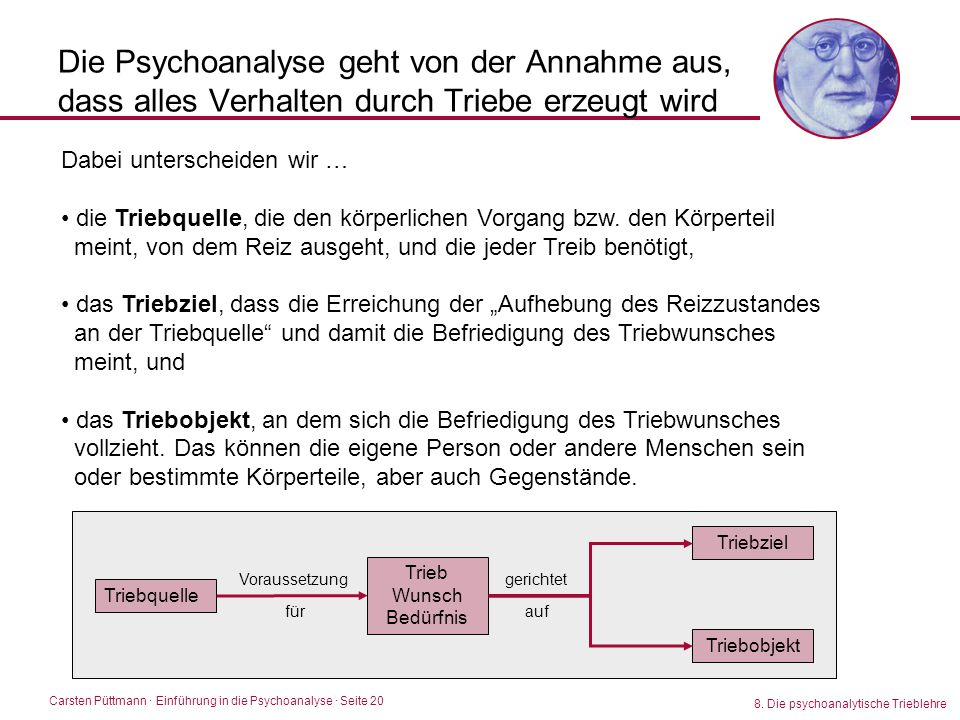 Die Psychoanalyse geht von der Annahme aus, dass alles Verhalten durch Triebe erzeugt wird