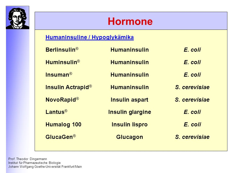 Hormone Humaninsuline / Hypoglykämika