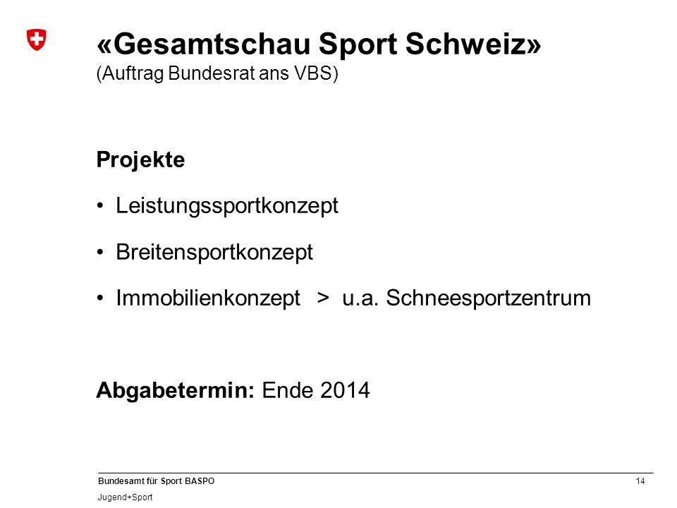 «Gesamtschau Sport Schweiz» (Auftrag Bundesrat ans VBS)